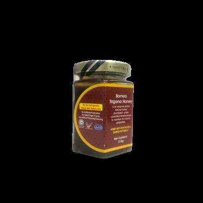 Borneo Trigona Honey (210g)